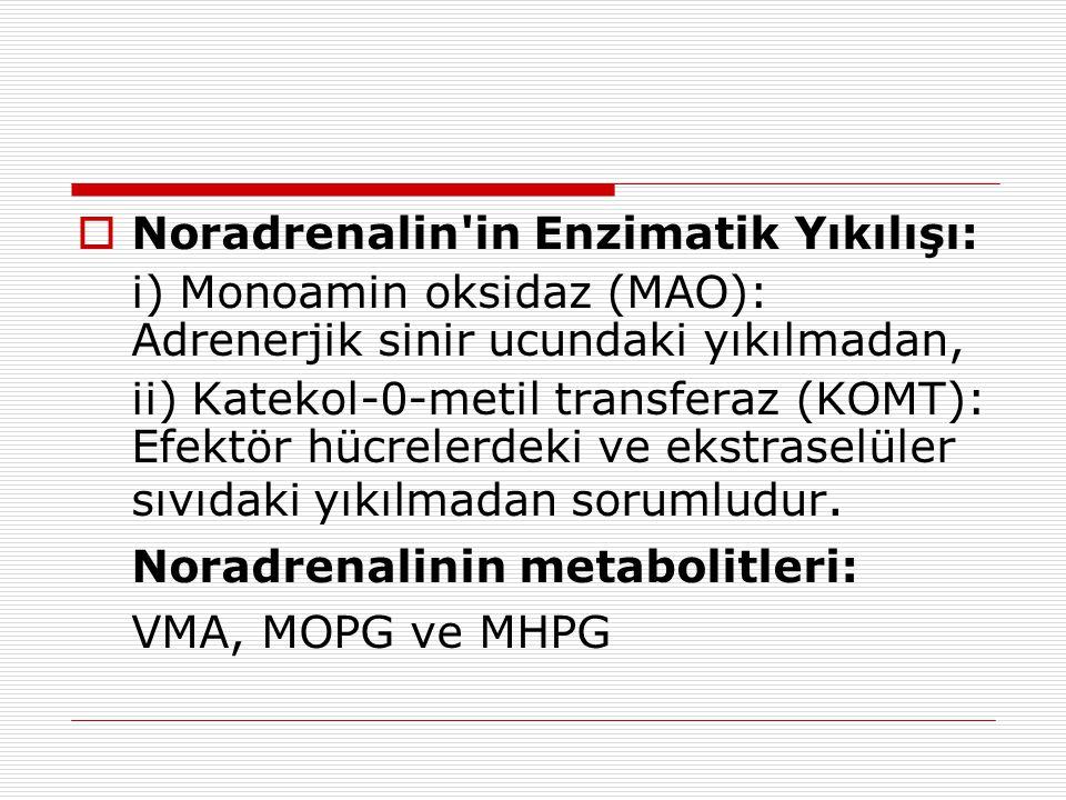 Noradrenalinin metabolitleri: