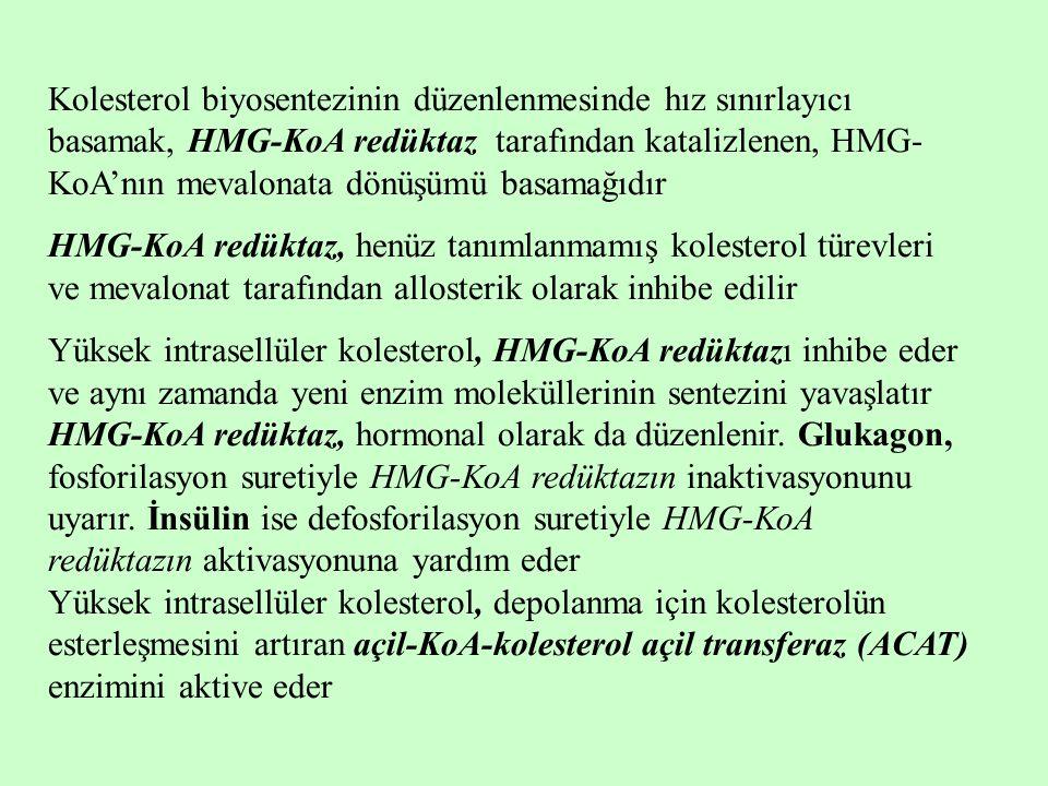 Kolesterol biyosentezinin düzenlenmesinde hız sınırlayıcı basamak, HMG-KoA redüktaz tarafından katalizlenen, HMG-KoA'nın mevalonata dönüşümü basamağıdır