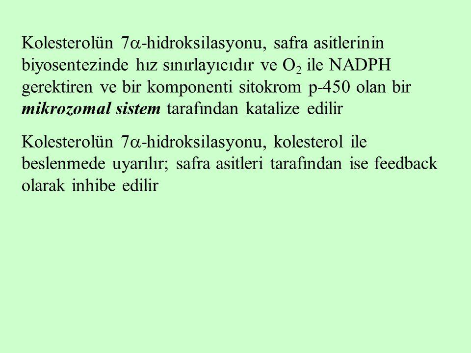 Kolesterolün 7-hidroksilasyonu, safra asitlerinin biyosentezinde hız sınırlayıcıdır ve O2 ile NADPH gerektiren ve bir komponenti sitokrom p-450 olan bir mikrozomal sistem tarafından katalize edilir
