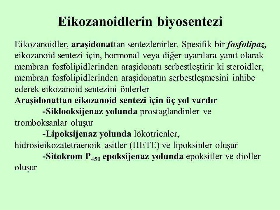 Eikozanoidlerin biyosentezi