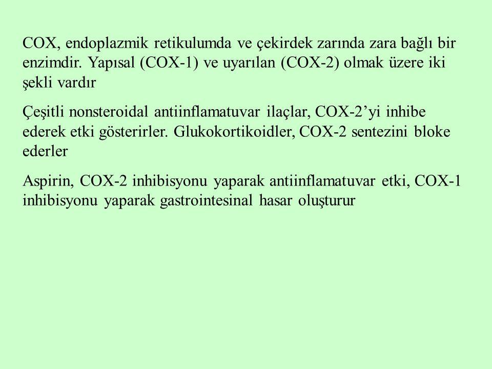 COX, endoplazmik retikulumda ve çekirdek zarında zara bağlı bir enzimdir. Yapısal (COX-1) ve uyarılan (COX-2) olmak üzere iki şekli vardır