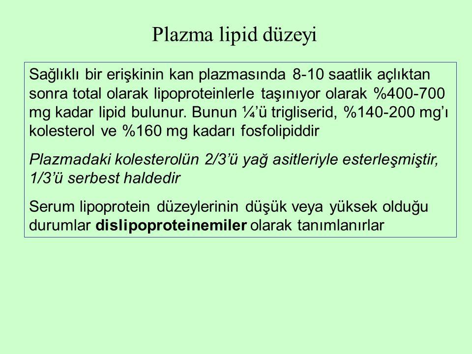 Plazma lipid düzeyi