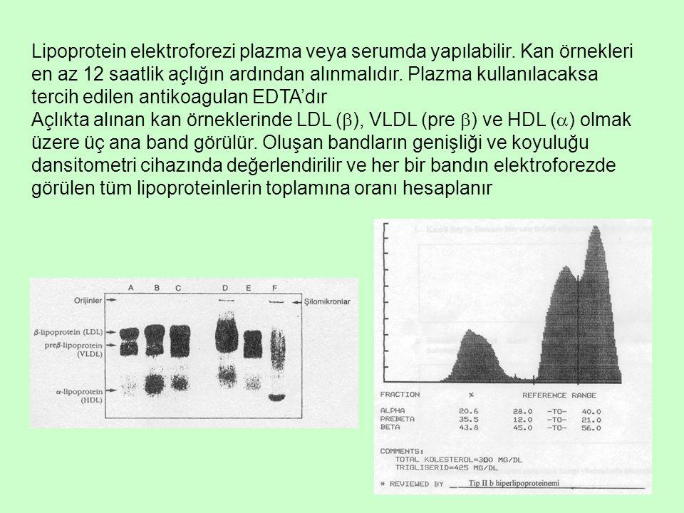 Lipoprotein elektroforezi plazma veya serumda yapılabilir