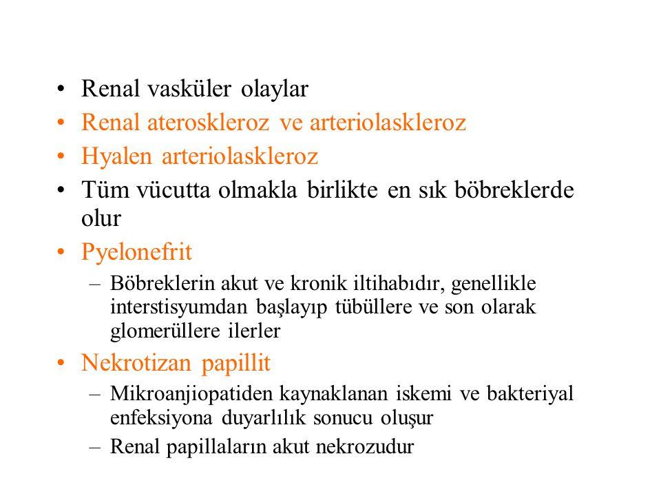 Renal vasküler olaylar Renal ateroskleroz ve arteriolaskleroz