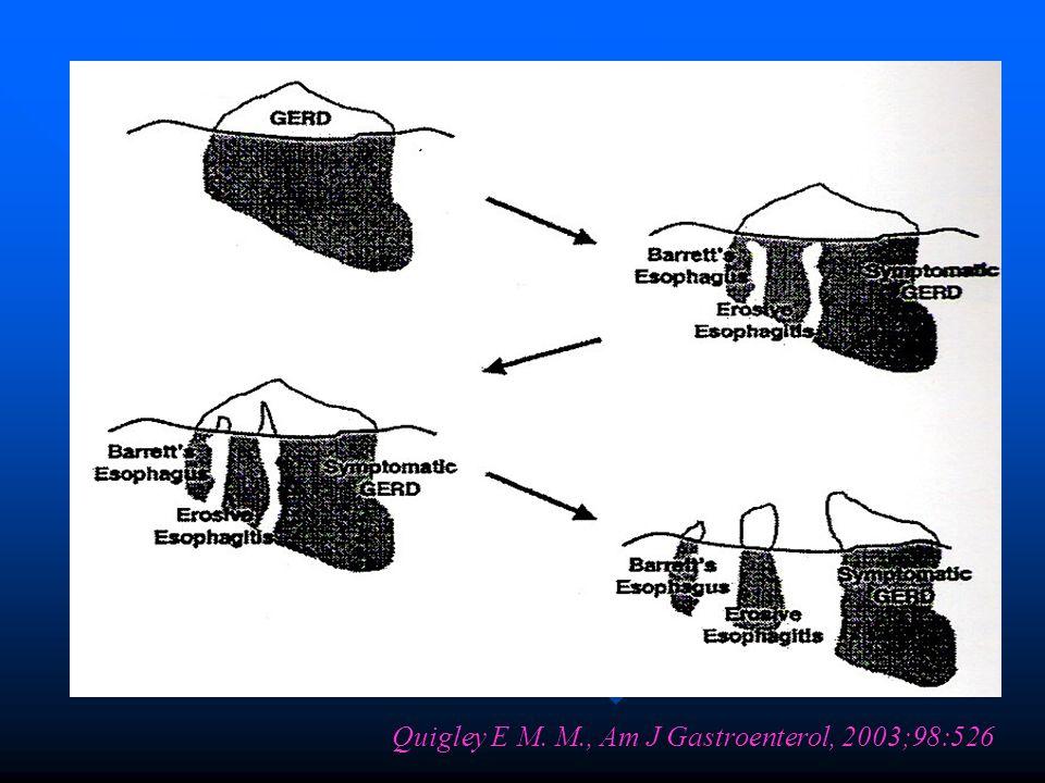 Quigley E M. M., Am J Gastroenterol, 2003;98:526