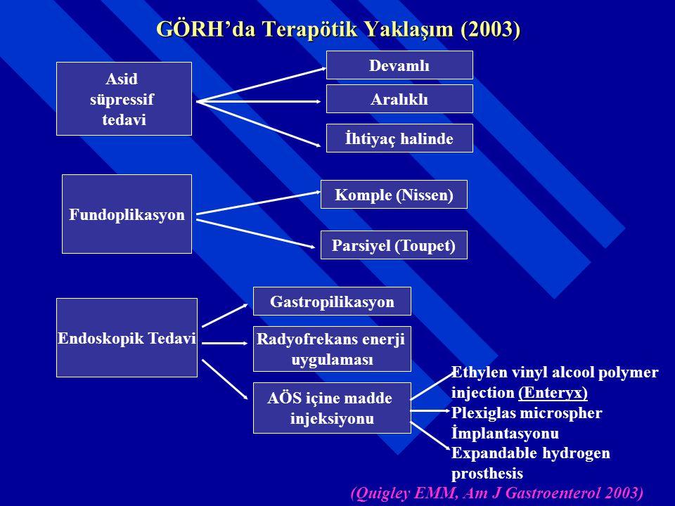 GÖRH'da Terapötik Yaklaşım (2003)