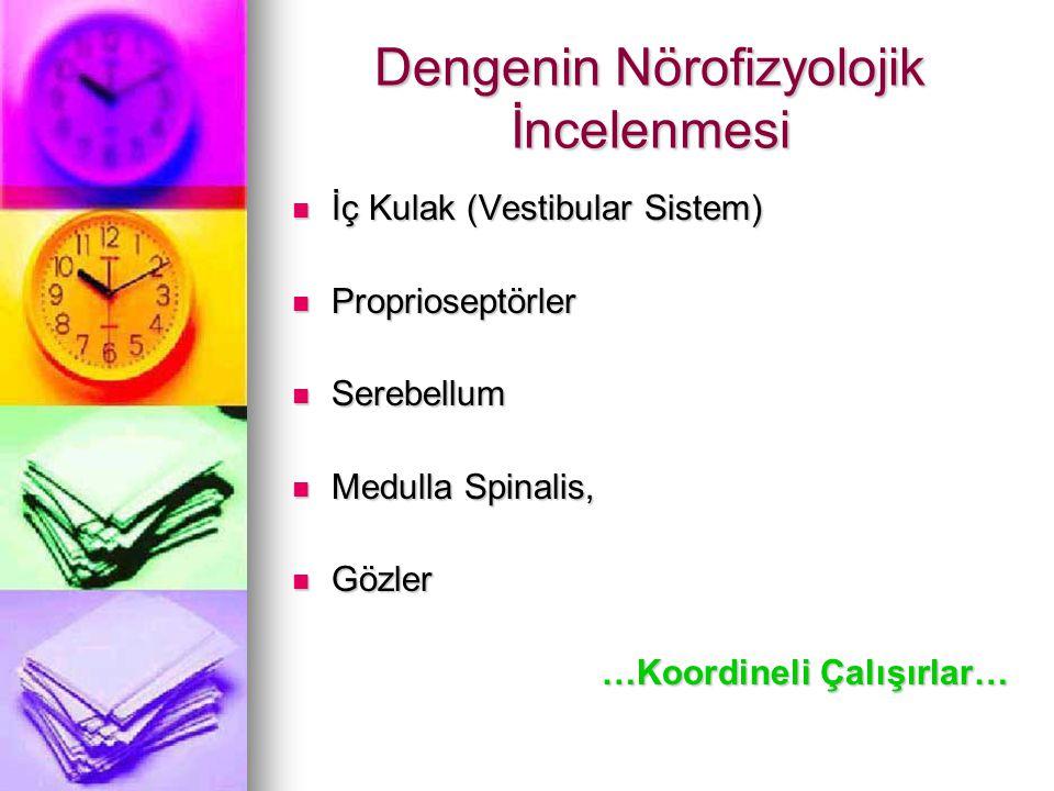 Dengenin Nörofizyolojik İncelenmesi