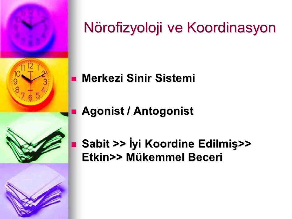 Nörofizyoloji ve Koordinasyon