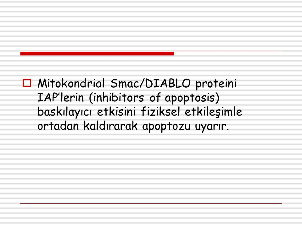 Mitokondrial Smac/DIABLO proteini IAP'lerin (inhibitors of apoptosis) baskılayıcı etkisini fiziksel etkileşimle ortadan kaldırarak apoptozu uyarır.