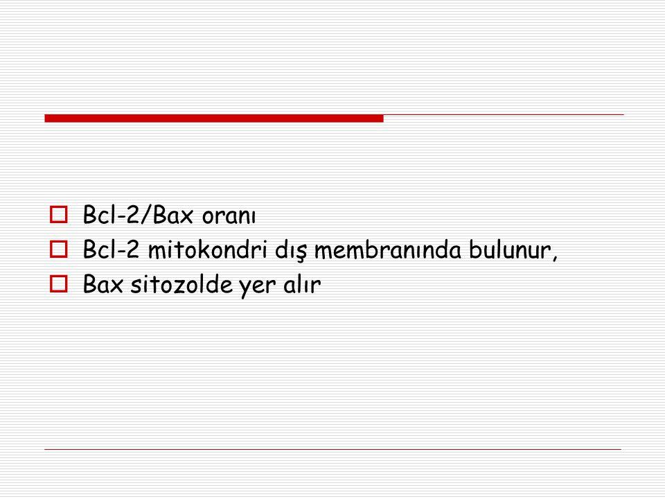Bcl-2/Bax oranı Bcl-2 mitokondri dış membranında bulunur, Bax sitozolde yer alır