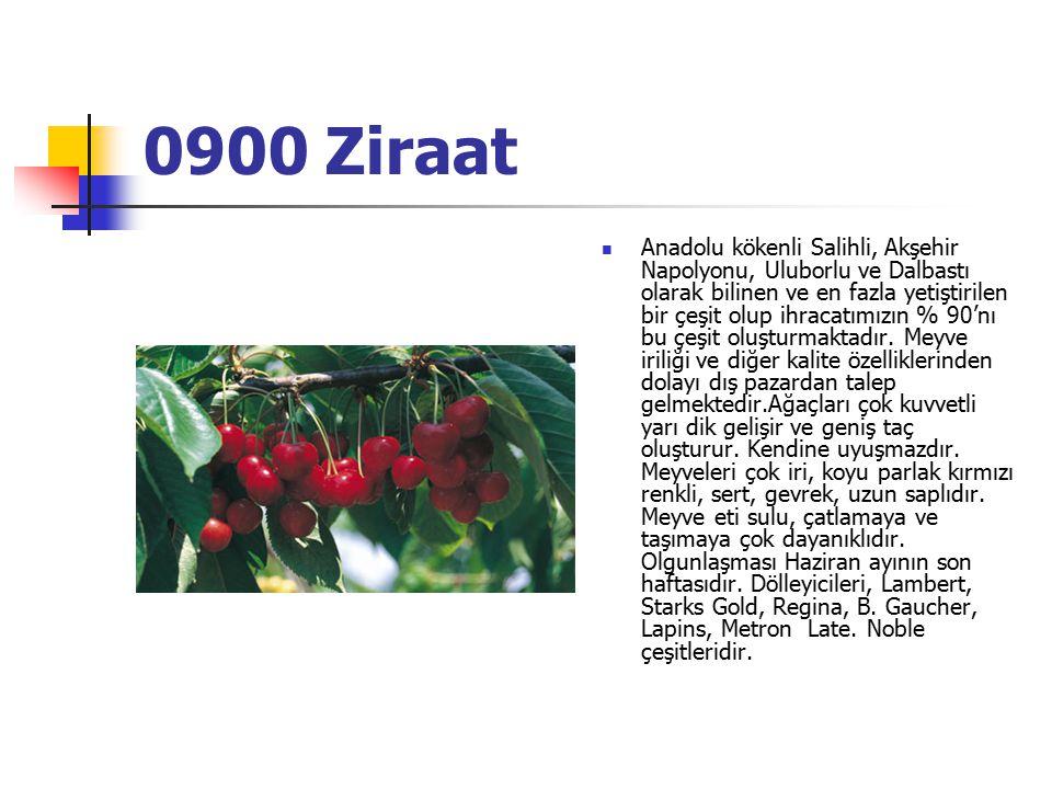 0900 Ziraat