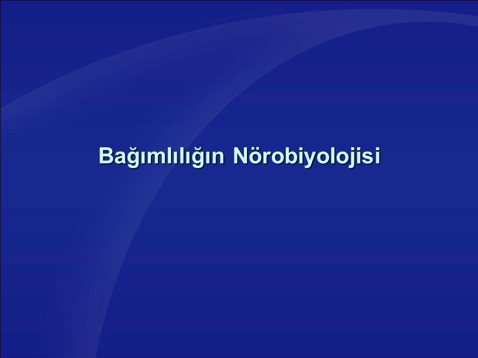 Bağımlılığın Nörobiyolojisi