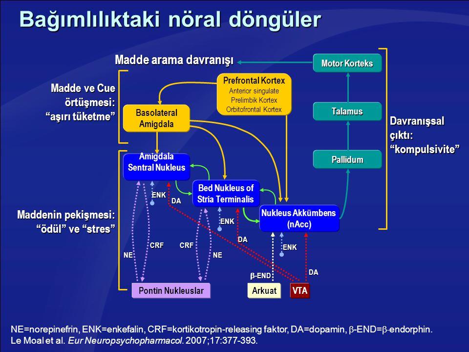 Bağımlılıktaki nöral döngüler