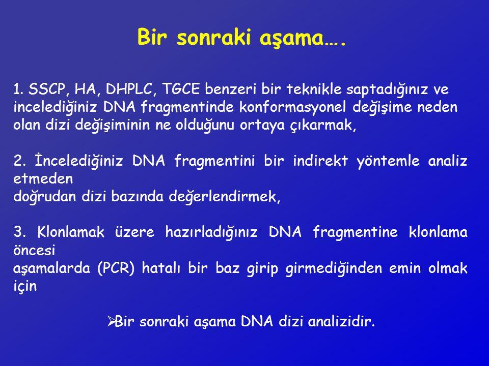 Bir sonraki aşama DNA dizi analizidir.