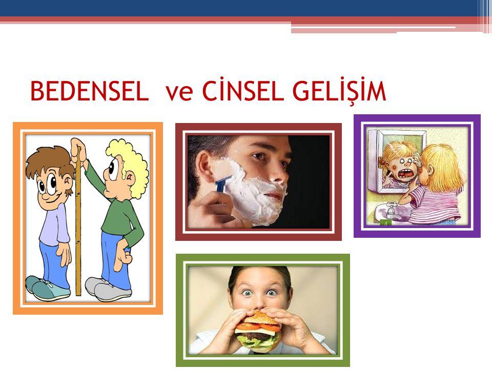 BEDENSEL ve CİNSEL GELİŞİM