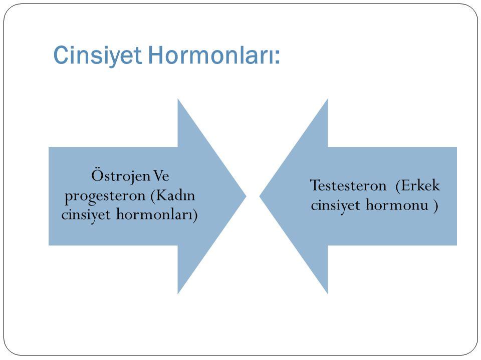 Cinsiyet Hormonları: Östrojen Ve progesteron (Kadın cinsiyet hormonları) Testesteron (Erkek cinsiyet hormonu )