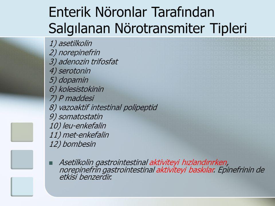Enterik Nöronlar Tarafından Salgılanan Nörotransmiter Tipleri