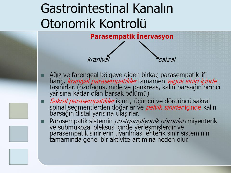 Gastrointestinal Kanalın Otonomik Kontrolü