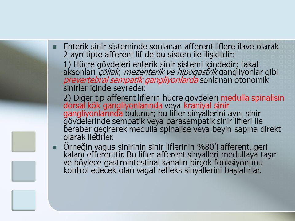 Enterik sinir sisteminde sonlanan afferent liflere ilave olarak 2 ayrı tipte afferent lif de bu sistem ile ilişkilidir: