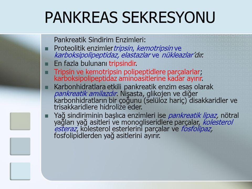 PANKREAS SEKRESYONU Pankreatik Sindirim Enzimleri: