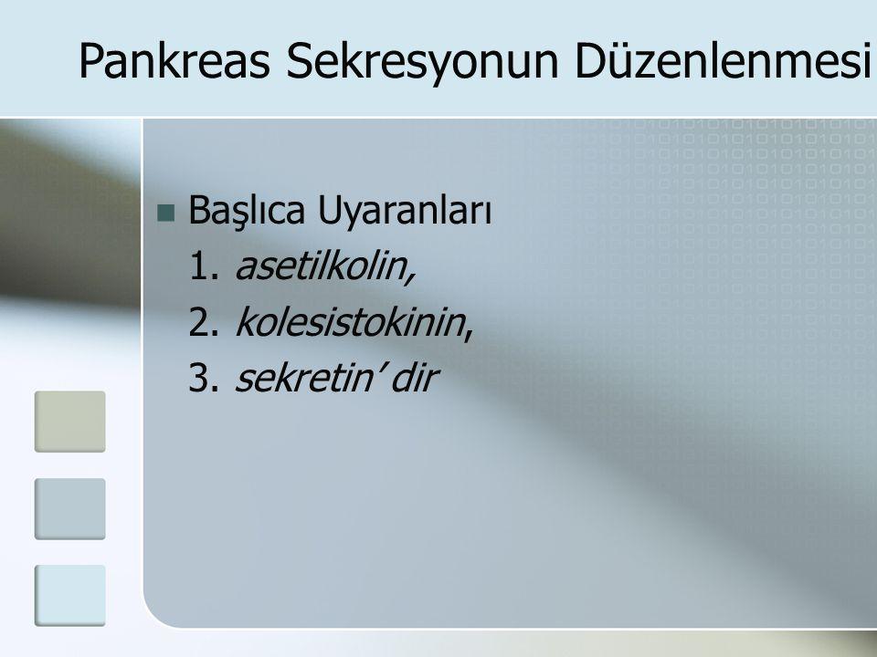 Pankreas Sekresyonun Düzenlenmesi