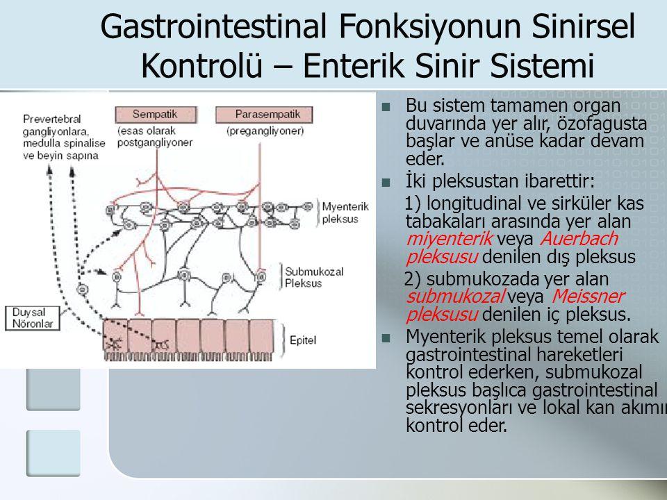 Gastrointestinal Fonksiyonun Sinirsel Kontrolü – Enterik Sinir Sistemi