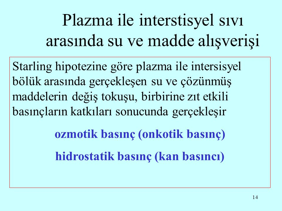Plazma ile interstisyel sıvı arasında su ve madde alışverişi