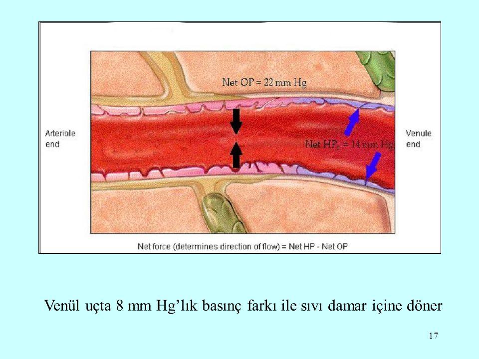 Venül uçta 8 mm Hg'lık basınç farkı ile sıvı damar içine döner