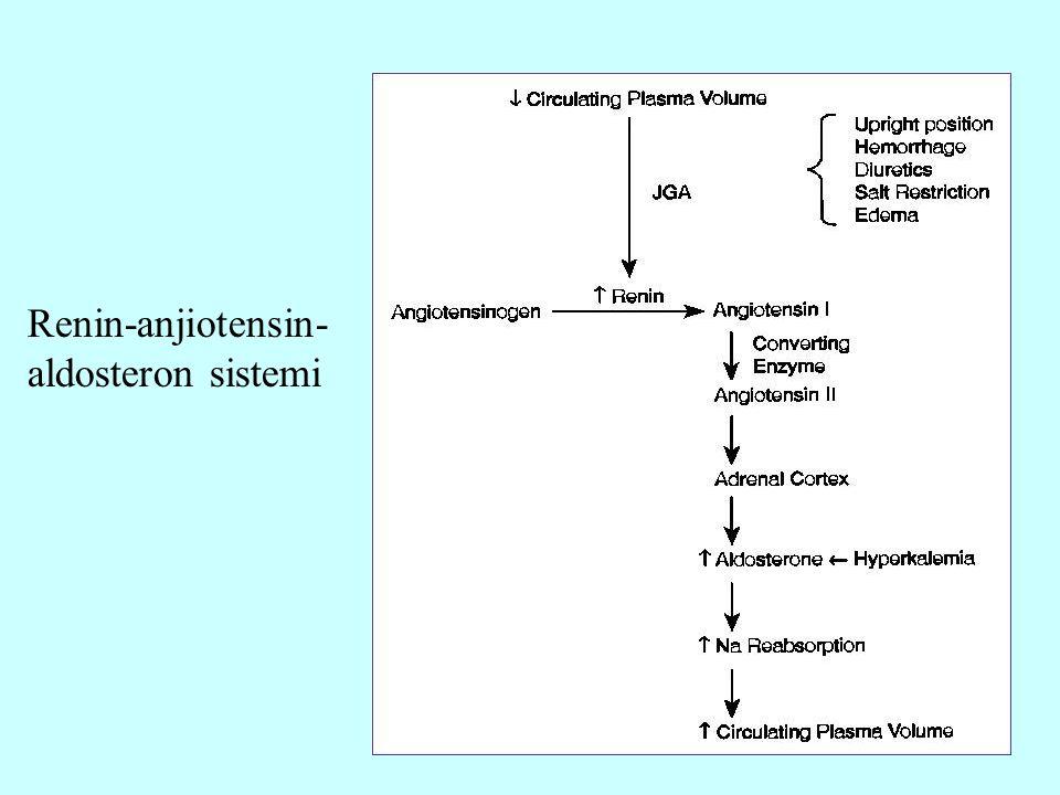 Renin-anjiotensin-aldosteron sistemi