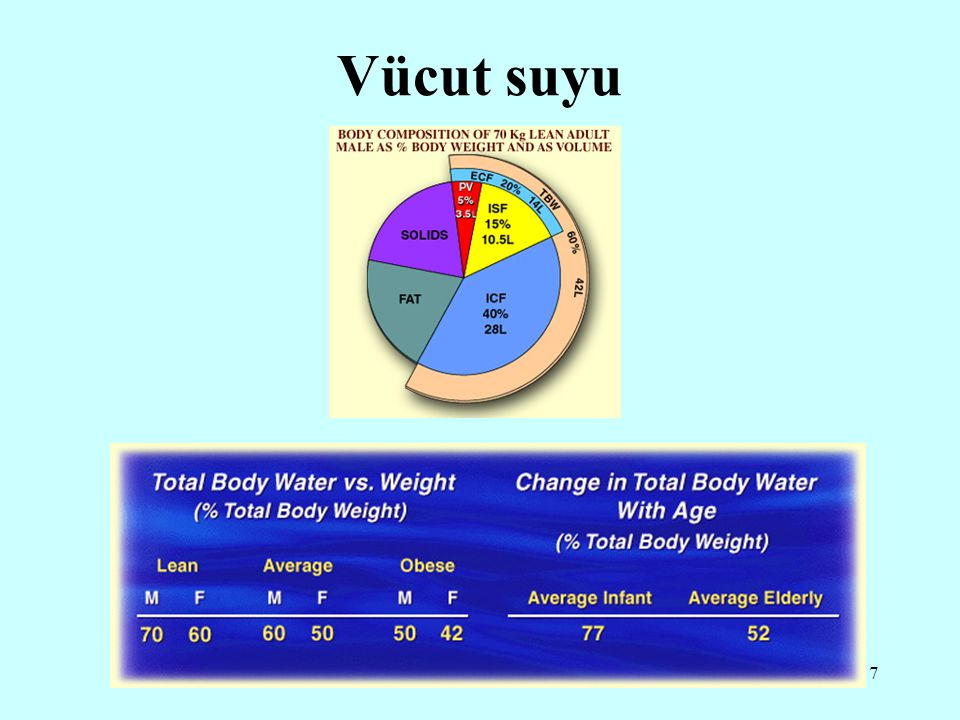 Vücut suyu