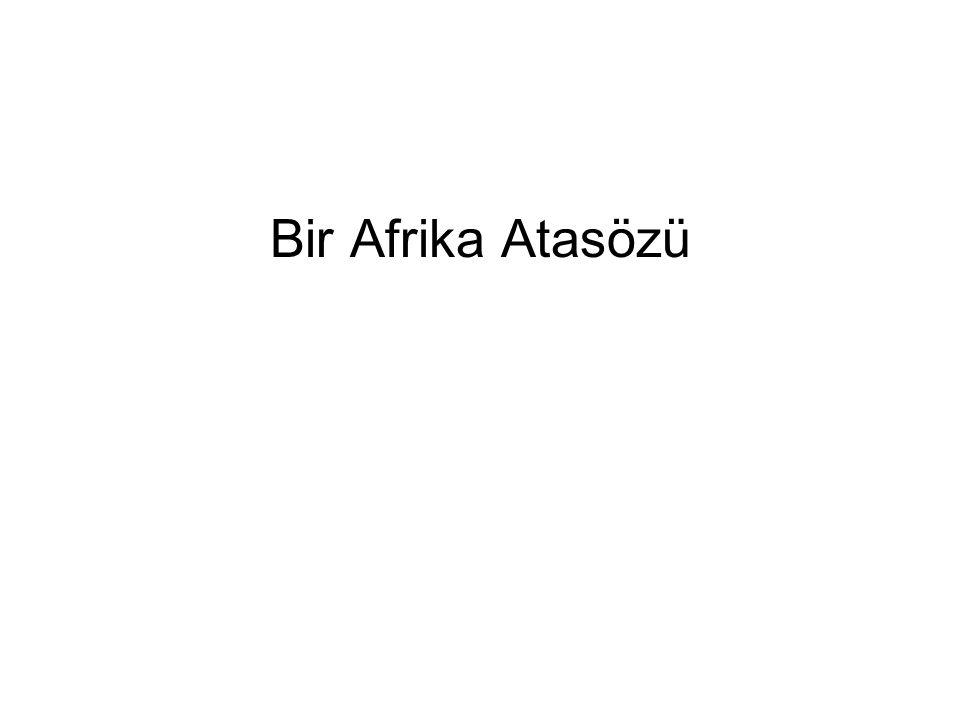 Bir Afrika Atasözü