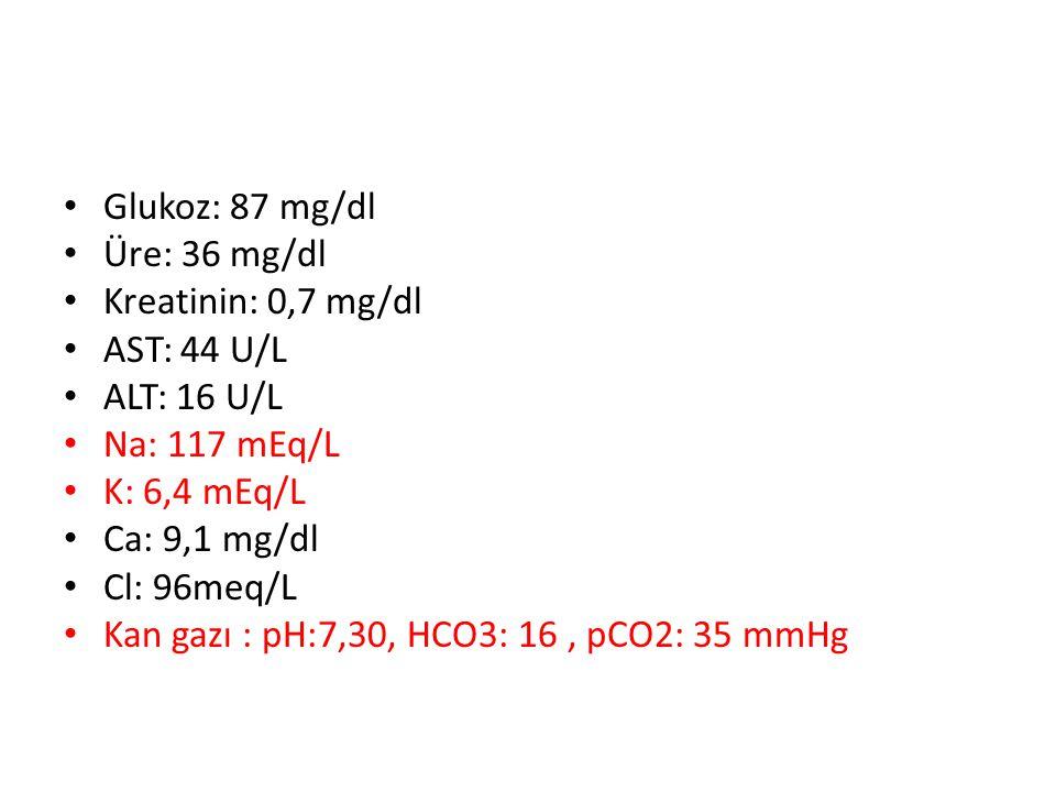 Glukoz: 87 mg/dl Üre: 36 mg/dl. Kreatinin: 0,7 mg/dl. AST: 44 U/L. ALT: 16 U/L. Na: 117 mEq/L. K: 6,4 mEq/L.
