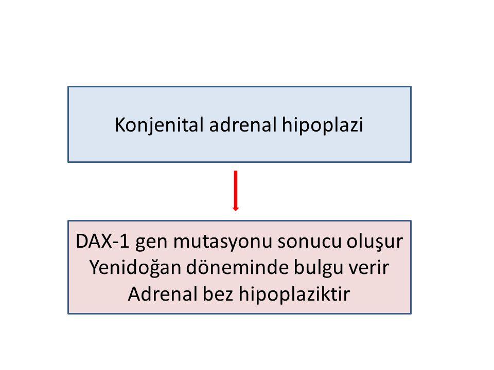 Konjenital adrenal hipoplazi