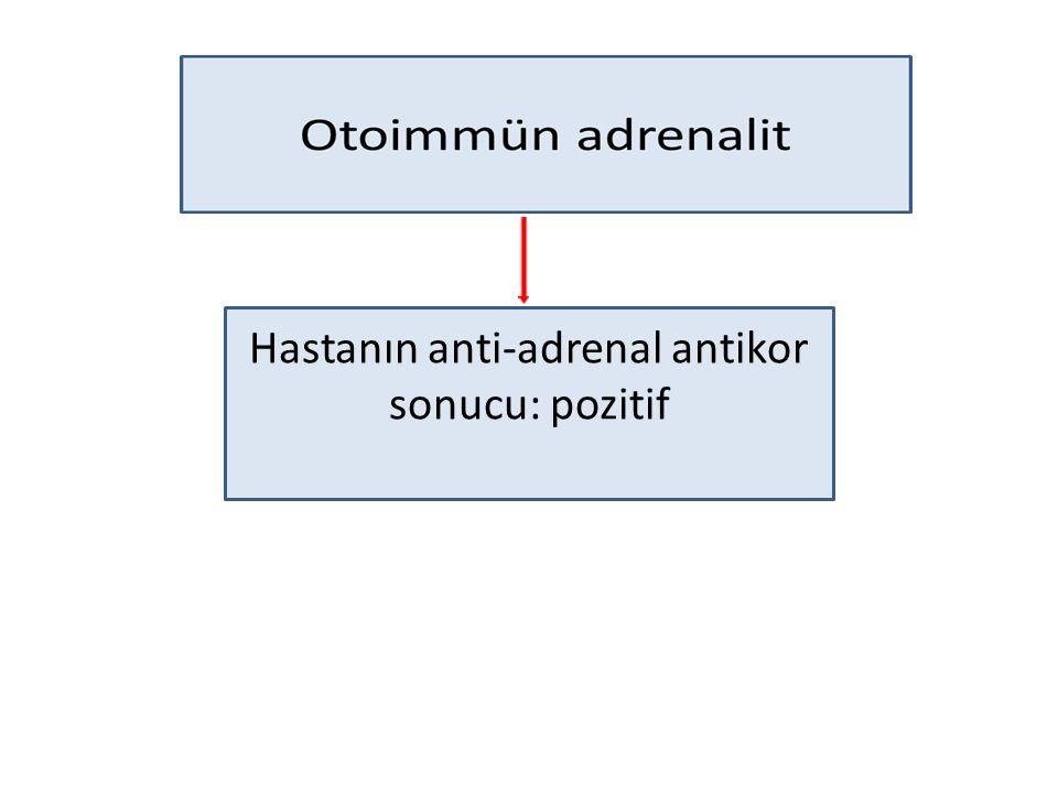Hastanın anti-adrenal antikor sonucu: pozitif