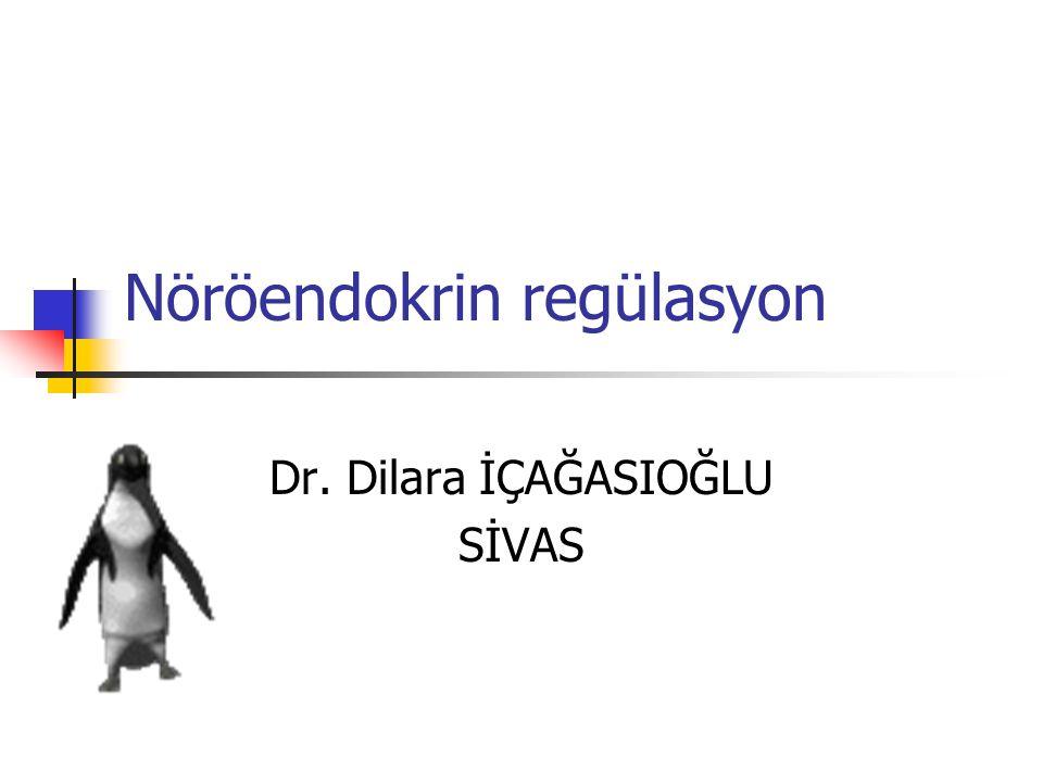 Nöröendokrin regülasyon