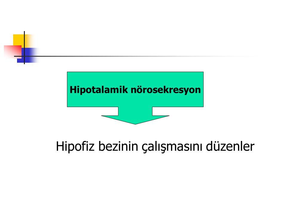 Hipotalamik nörosekresyon