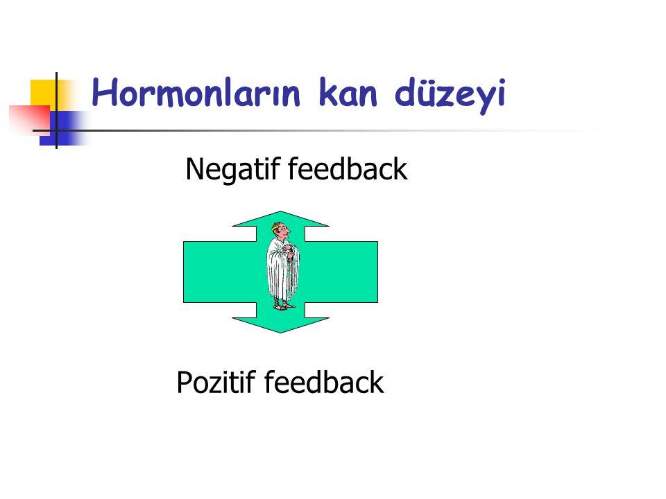 Hormonların kan düzeyi