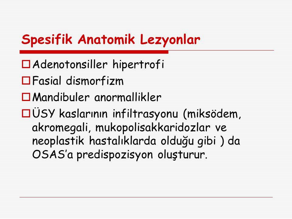 Spesifik Anatomik Lezyonlar