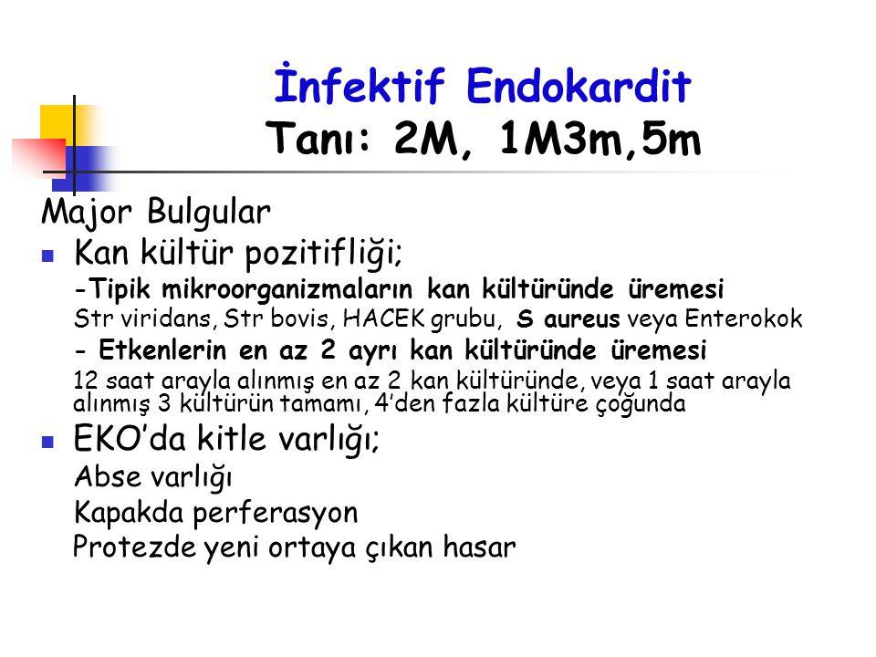 İnfektif Endokardit Tanı: 2M, 1M3m,5m