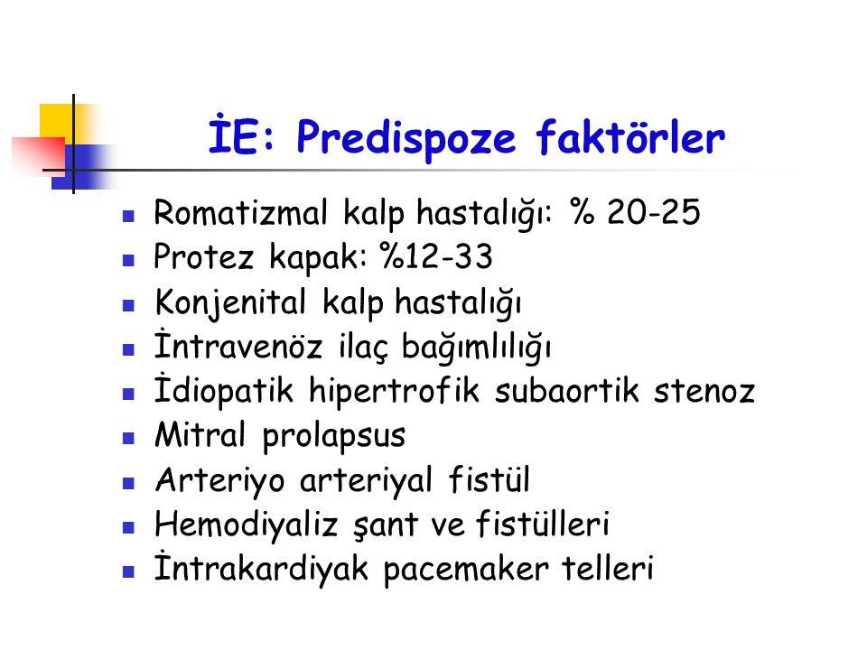 İE: Predispoze faktörler