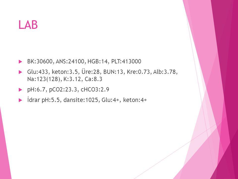 LAB BK:30600, ANS:24100, HGB:14, PLT:413000. Glu:433, keton:3.5, Üre:28, BUN:13, Kre:0.73, Alb:3.78, Na:123(128), K:3.12, Ca:8.3.