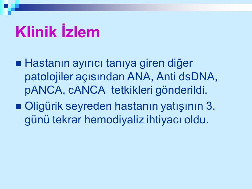 Klinik İzlem Hastanın ayırıcı tanıya giren diğer patolojiler açısından ANA, Anti dsDNA, pANCA, cANCA tetkikleri gönderildi.
