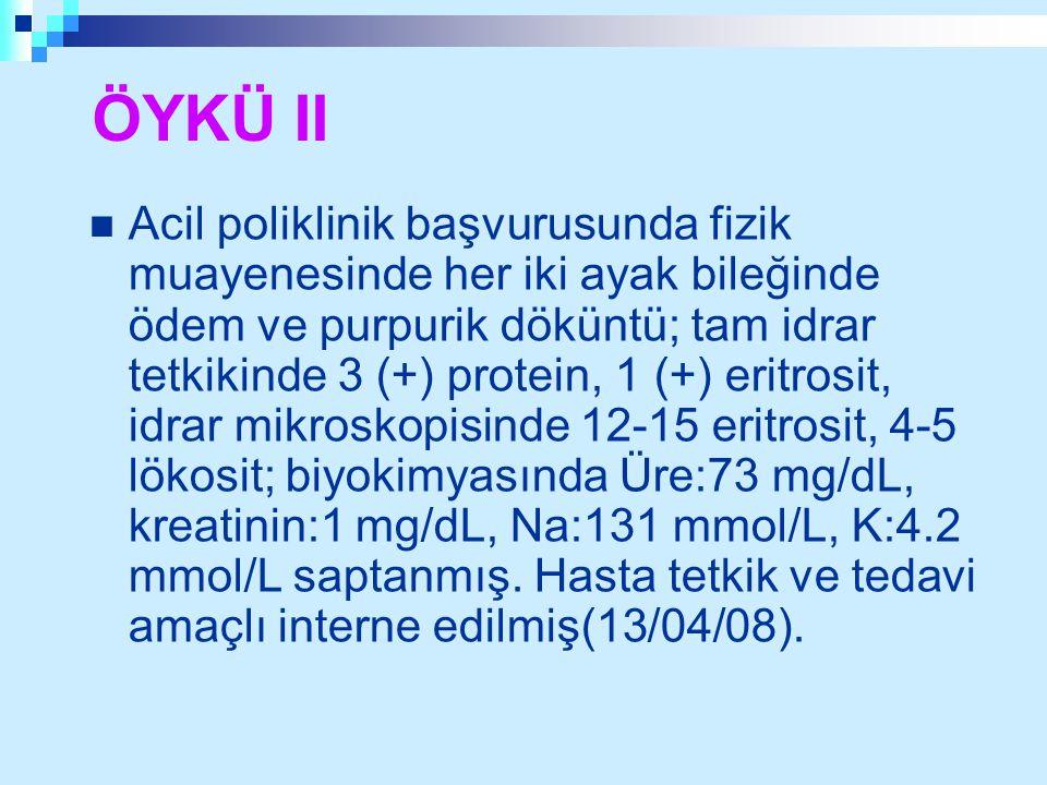 ÖYKÜ II