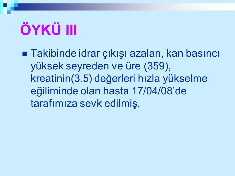 ÖYKÜ III