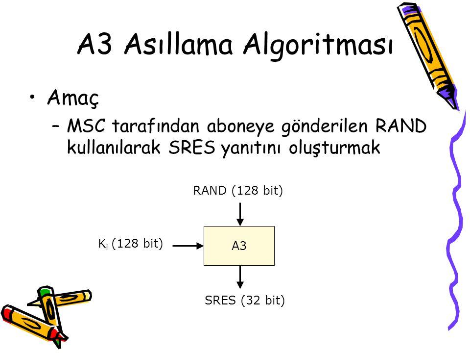 A3 Asıllama Algoritması