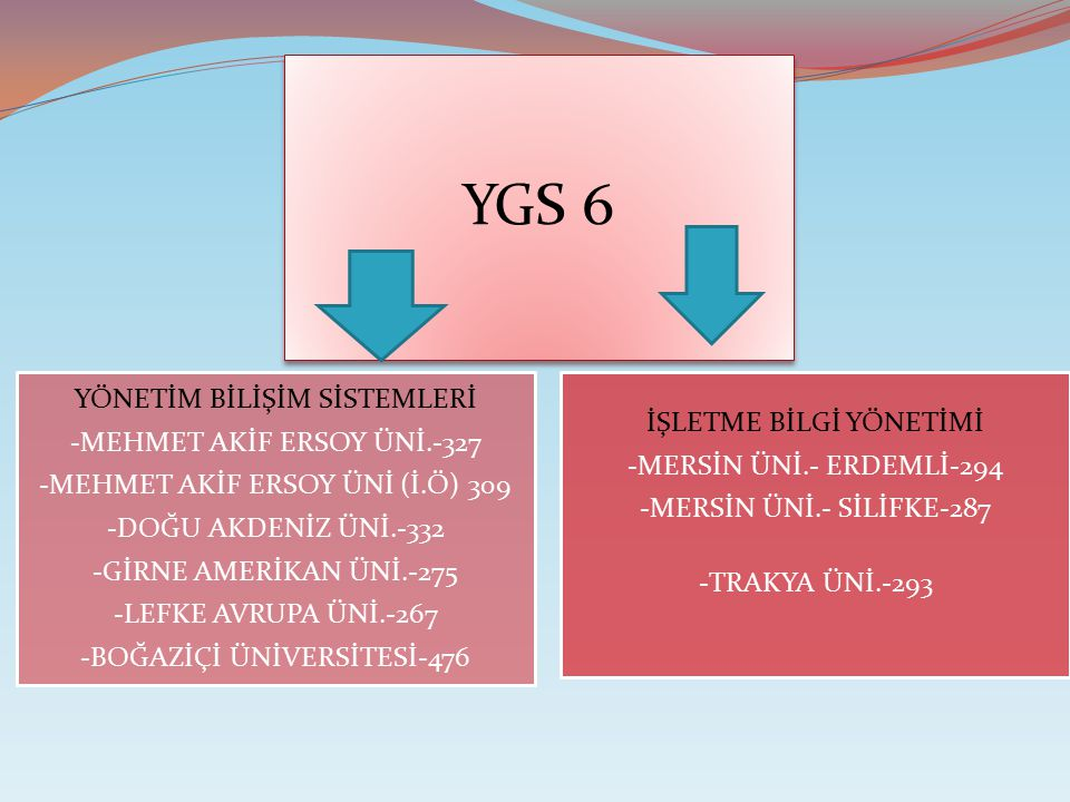 YGS 6 -MERSİN ÜNİ.- ERDEMLİ-294 İŞLETME BİLGİ YÖNETİMİ