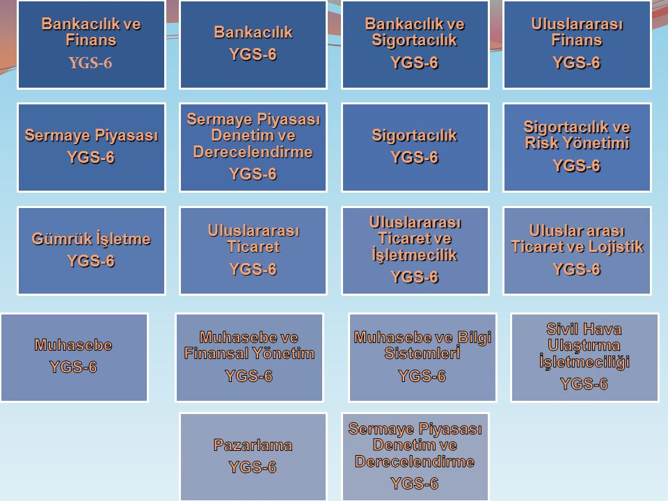 Bankacılık ve Sigortacılık Uluslararası Finans Sermaye Piyasası