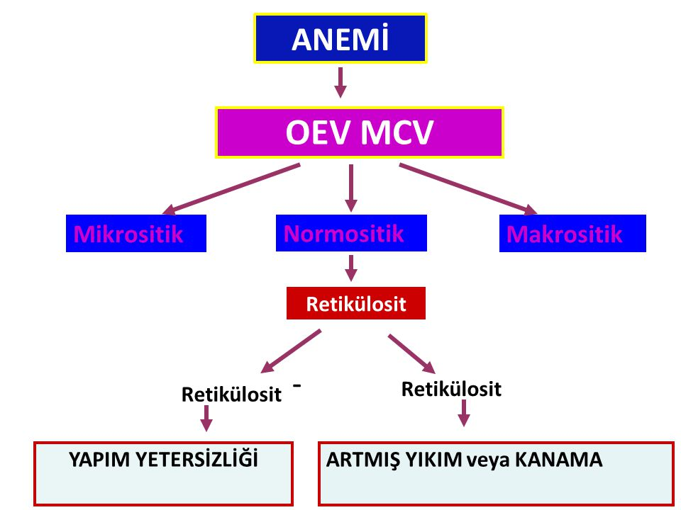 OEV MCV ANEMİ Mikrositik Normositik Makrositik Retikülosit