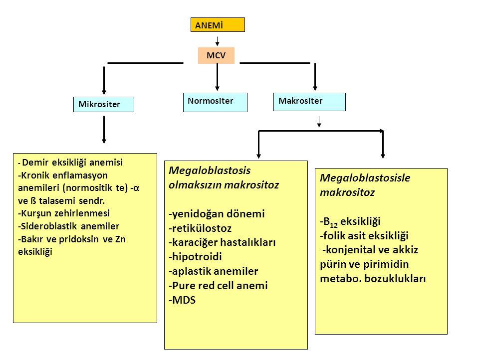 Megaloblastosis olmaksızın makrositoz