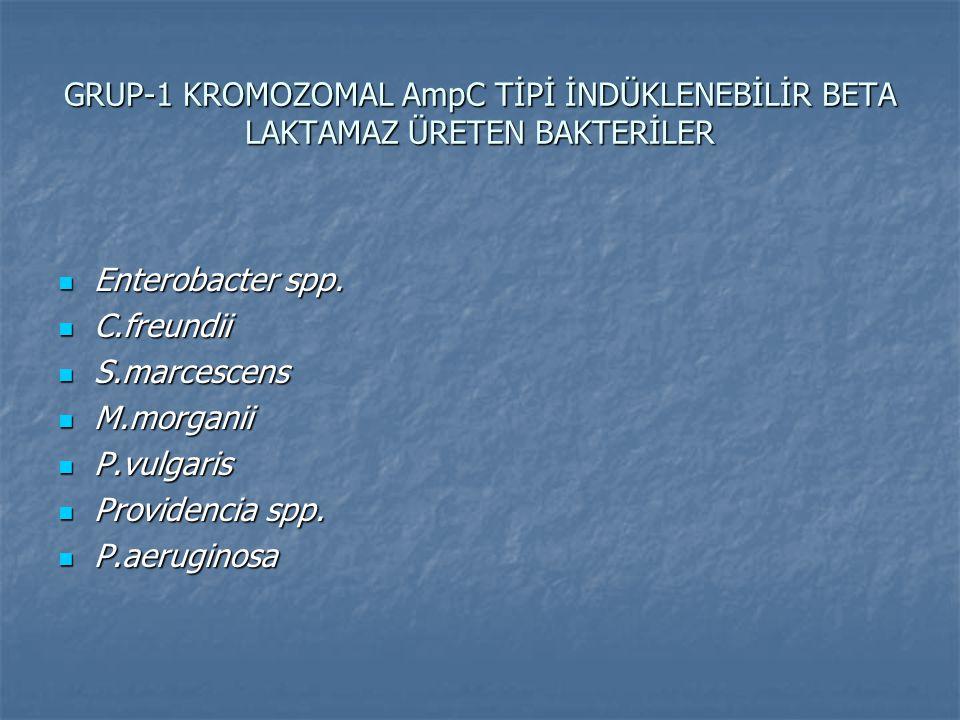 GRUP-1 KROMOZOMAL AmpC TİPİ İNDÜKLENEBİLİR BETA LAKTAMAZ ÜRETEN BAKTERİLER